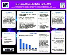 INCREASED SUICIDE RATES IN THE U.S.